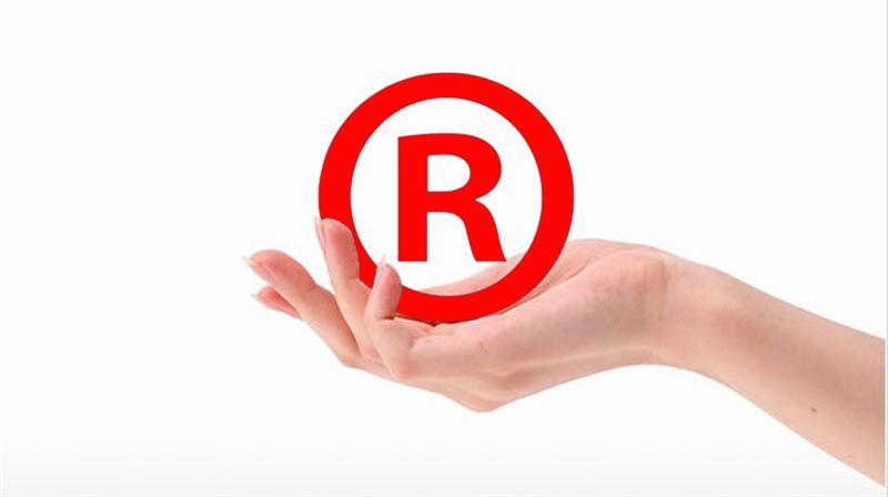 商标注册申请的部分驳回及怎么分割处理