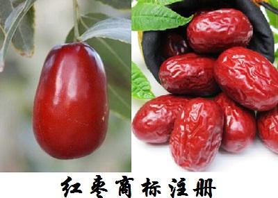 红枣商标注册